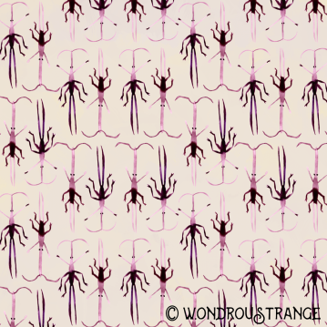 Magenta beetles 6 and 7 pattern display