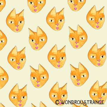 Sassy cat face pattern display