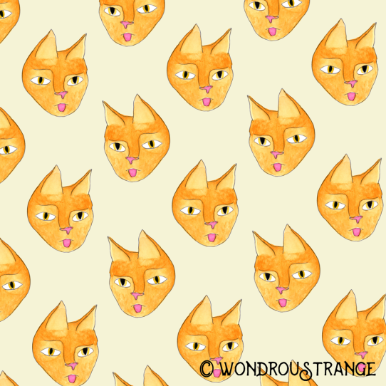 Sassy cat face pattern display