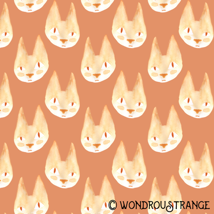 Stoopid cat face pattern display