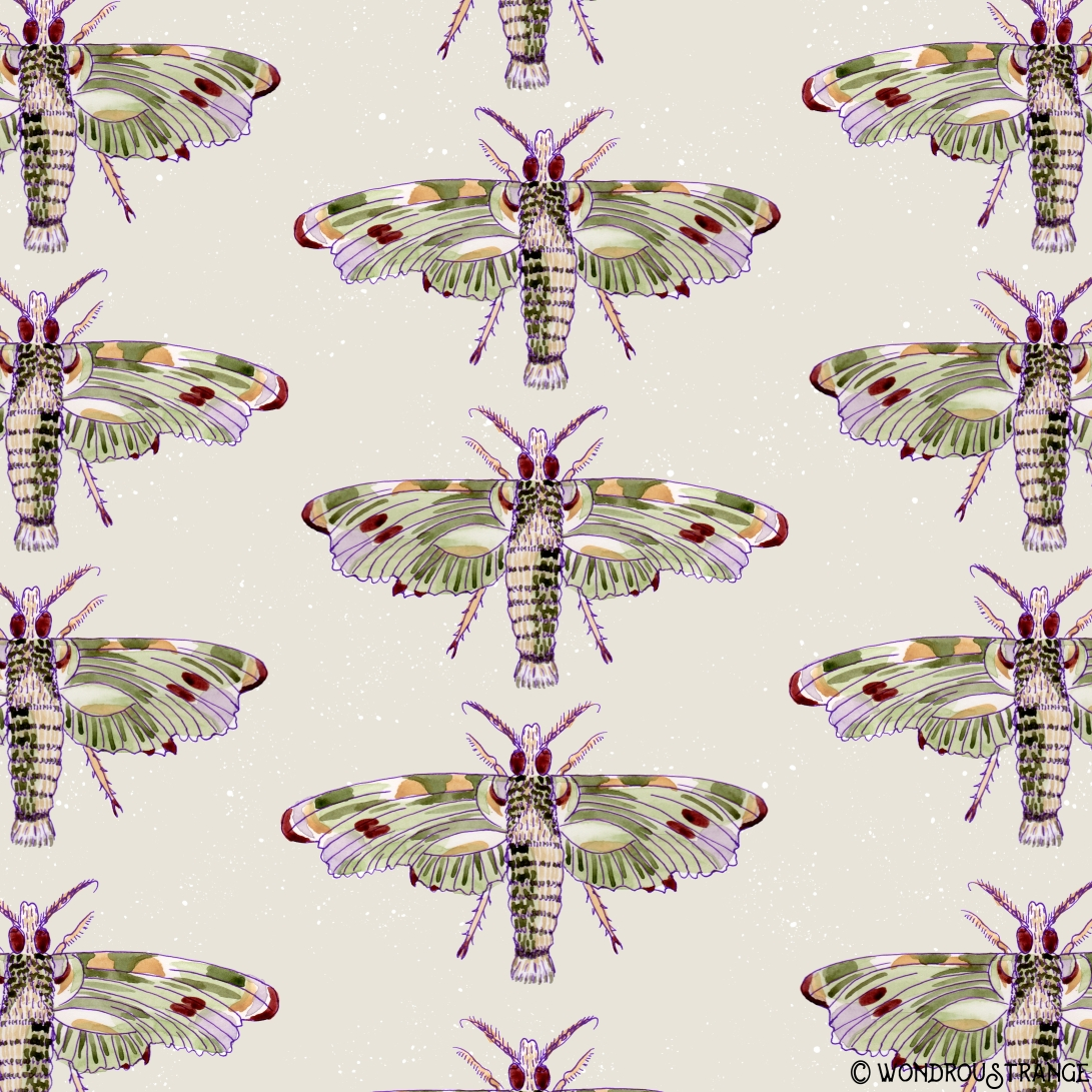 watercolor moth pattern1