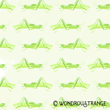 Grasshopper pattern display
