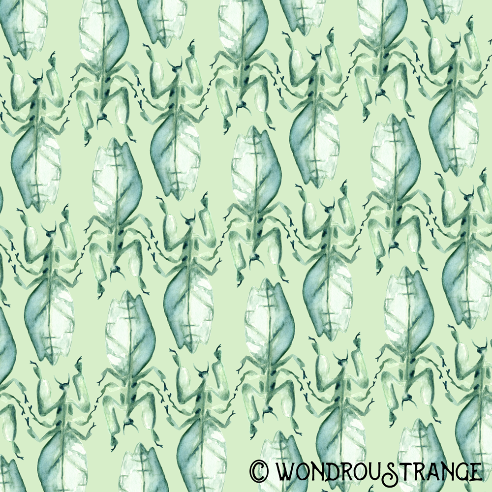Leafy Praying Mantis Pattern Display