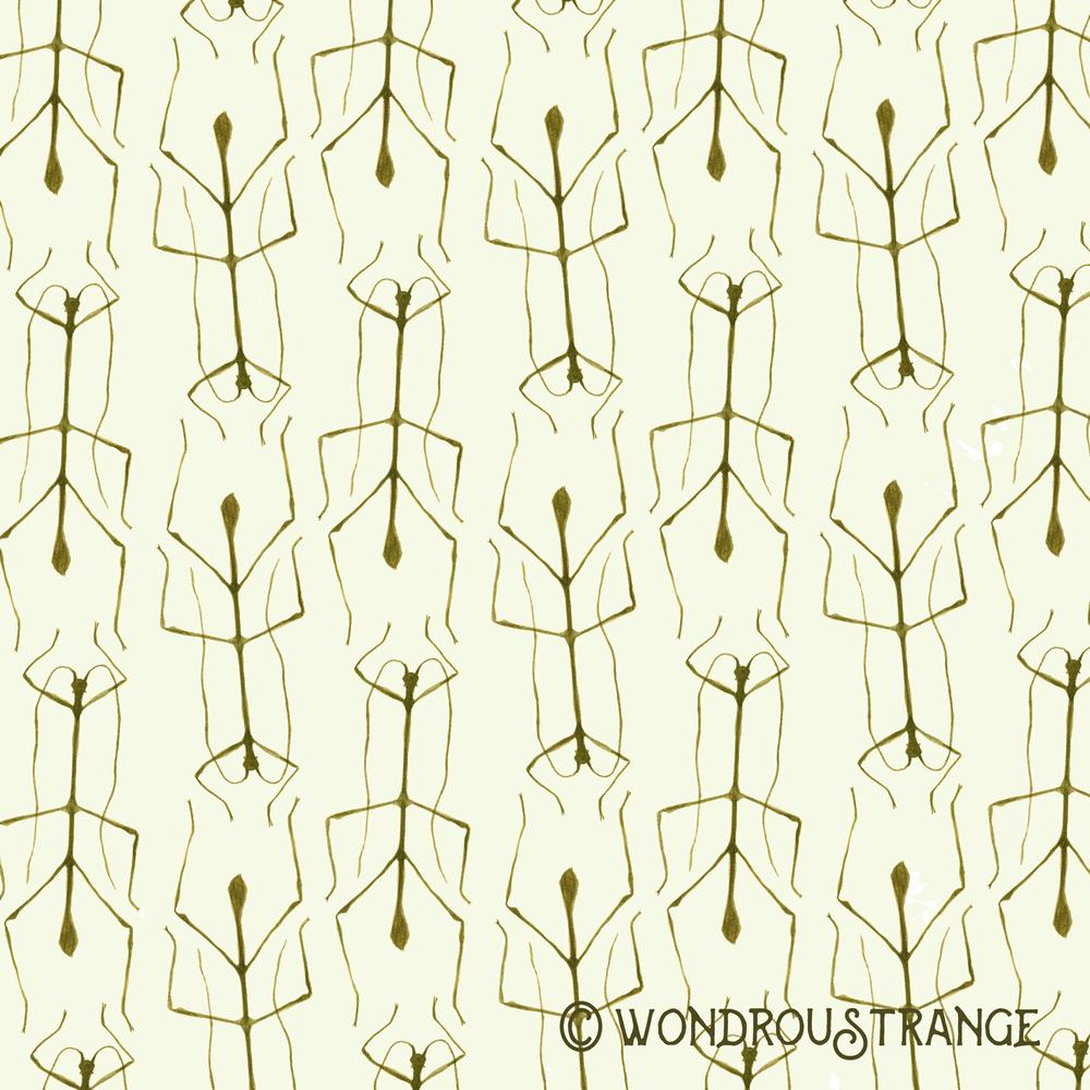 Stick Bug Pattern Display