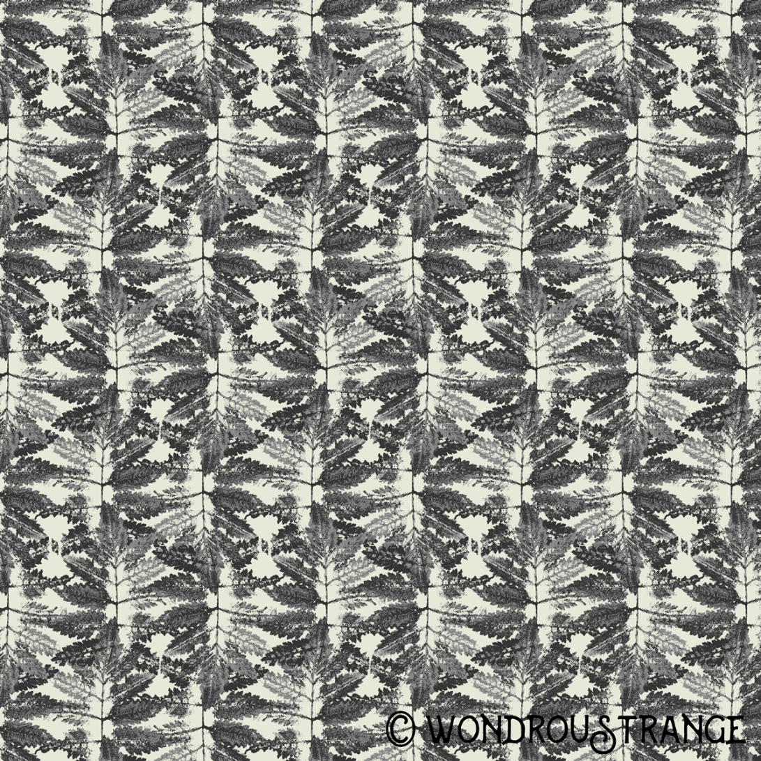 Fern Pattern Display
