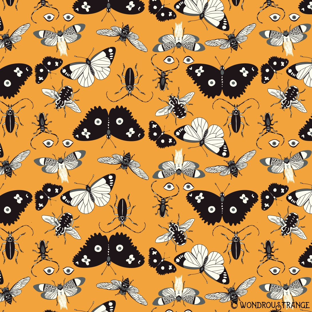 cicada beetle and butterfly pattern dispay c