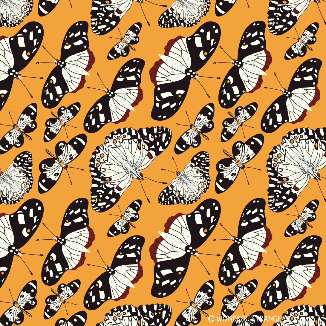 orange and black butterflies pattern display